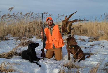 Rooster roundup: snow and the best ring-necked pheasant hunting of the season