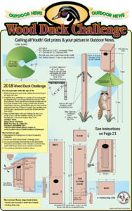 Build A Wood Duck House on rustic birdhouse plans free, duck pen co-op, duck houses on ponds, cardinal birdhouse plans free, duck recipes free, duck boat plans, airplane whirligig plans free, full size whirligig plans free, chest plans free, duck houses and runs, pvc dog wheelchair plans free, duck wallpaper free, duck nesting box plans, duck tractor plans, duck housing google search, duck coop plans, duck pen design, duck blind plans,