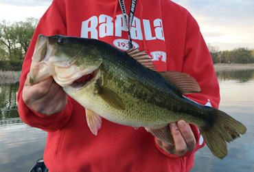 Fishing tips: Catching bass in shallow water through the summer