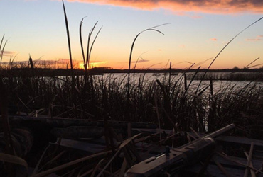 Waterfowl hunting tip, staying camouflaged is key to a successful hunt