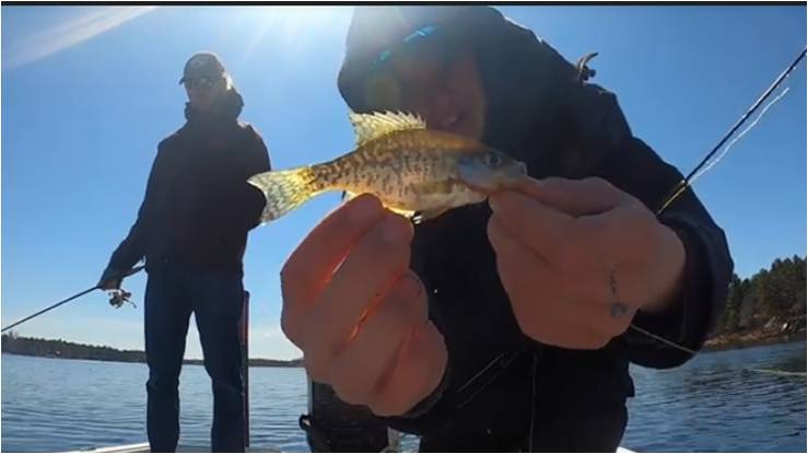 The Super Bahr Brothers Adventure series from Outdoor News Junior Pro Team continues despite COVID-19 quarantines thanks to self filming by JPT Captains Kyle and Tyler Bahr.
