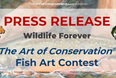 Outdoor News Supports Minnesota Fish Art Contest