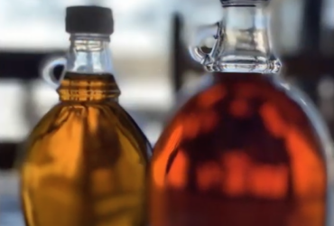 JPT Field Report – Making Maple syrup after collecting sap