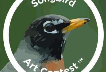 New Songbird Art Contest